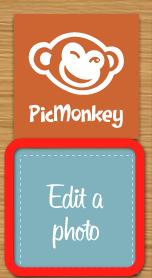 monkey-0-2012-05-28-09-031.png